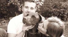 Canguros De Perros Asegurados Y De Confianza