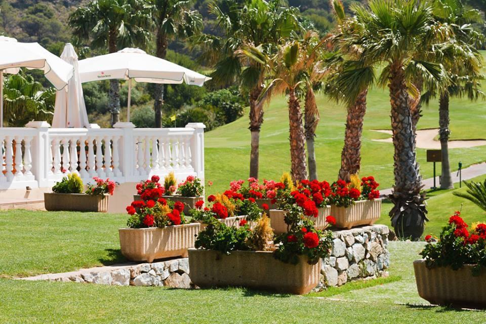 alhaurin golf espacios