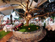 Jardín Botanico Celebraciones