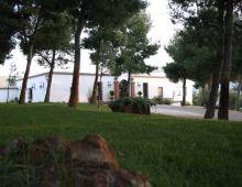 Cerro Puerta