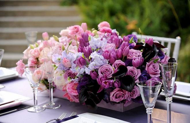 bonsai floristas centros