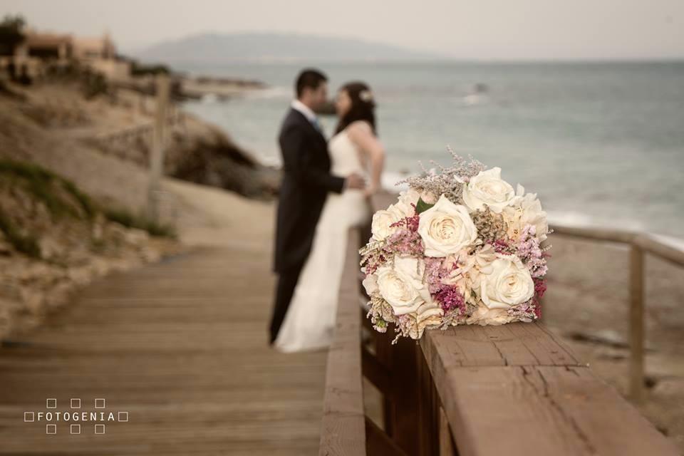 fotogenia studio fotografo bodas almeria