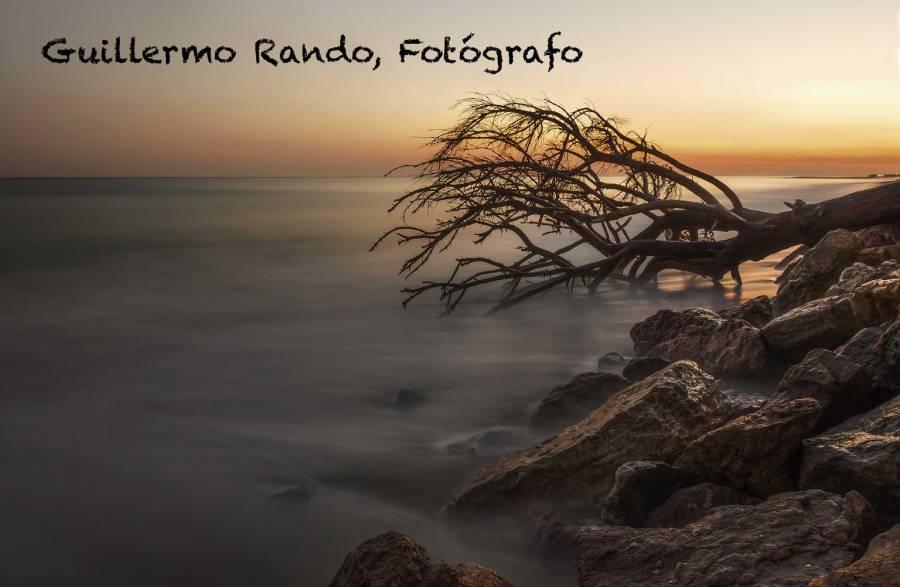 www.guillermorando.com