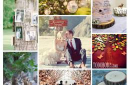 Inspiración para bodas con madera, troncos o árboles