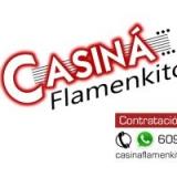 Casiná Flamenkito