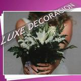 Luxe Decoracion