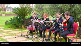 El último Mohicano Cuarteto de cuerda cóctel finca buenavista Murcia