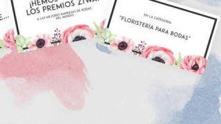 Floristería Los Ángeles: Ganadores de los premios ZIWA 2016
