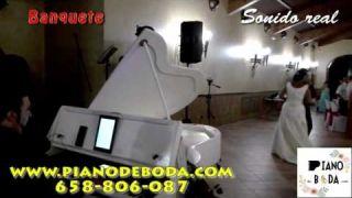 Servicios de boda con Piano de boda