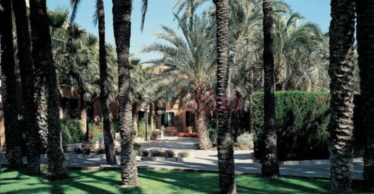 Hotel jard n milenio for Jardin milenio