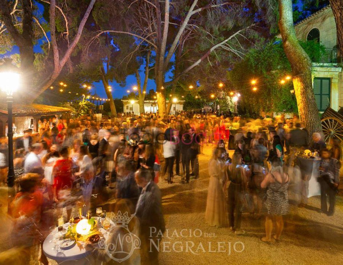 Fotos De Palacio Del Negralejo