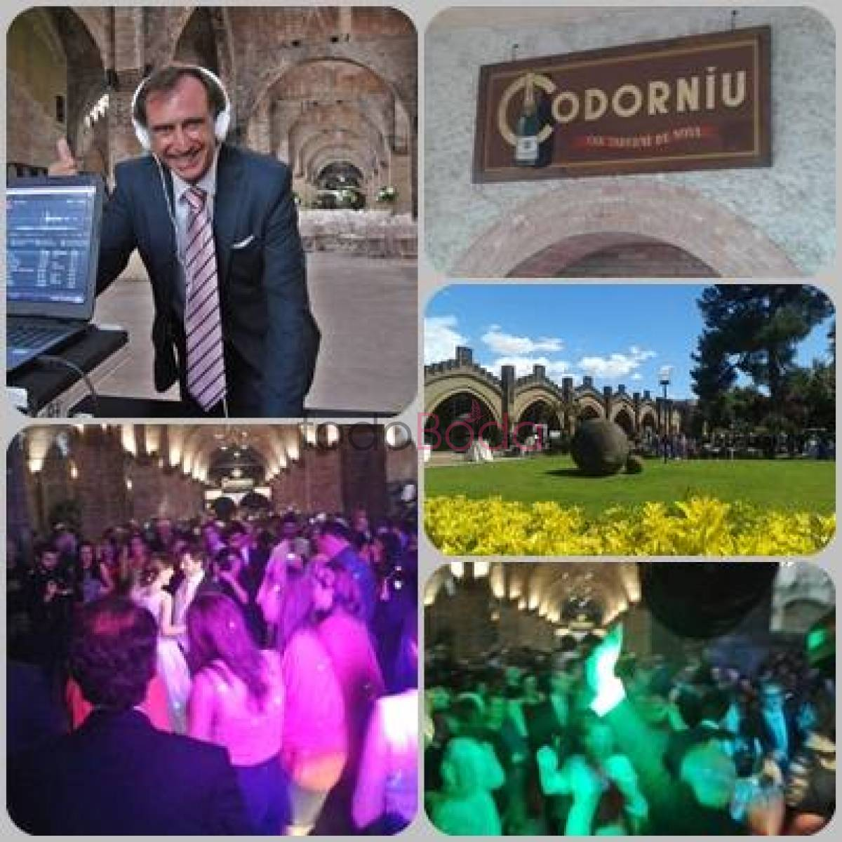collage Codorniu